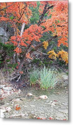 Peaceful Retreat Lost Maples Texas Hill Country Metal Print by Silvio Ligutti
