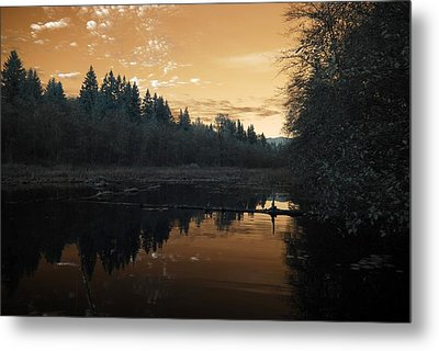 Metal Print featuring the photograph Peaceful Sunset by Rebecca Parker