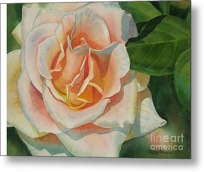 Peach And Gold Colored Rose Metal Print