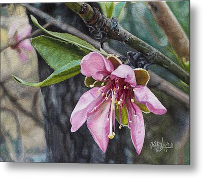 Metal Print featuring the painting Peach Blossom by Joshua Martin
