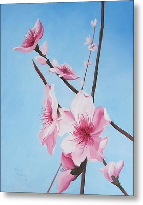 Peach Blossoms Metal Print by Mary Rogers