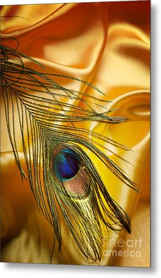 Peacock Feather Metal Print by Jelena Jovanovic
