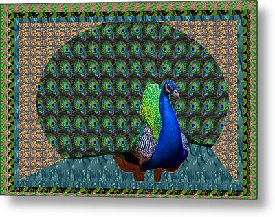 Peacock Graphic Design Based On Photographic Image Artist Navinjoshi Metal Print