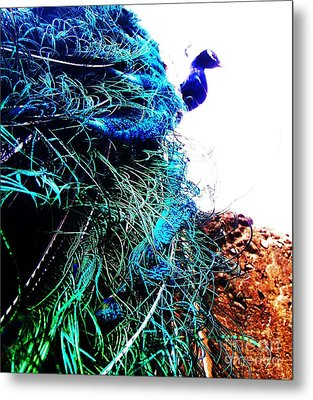 Metal Print featuring the photograph Peacock Portrait by Vanessa Palomino