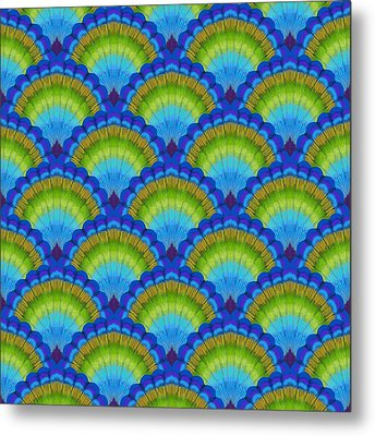 Peacock Scallop Feathers Metal Print