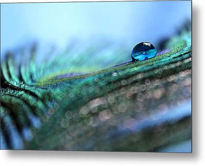Peacock Tear Metal Print by Krissy Katsimbras