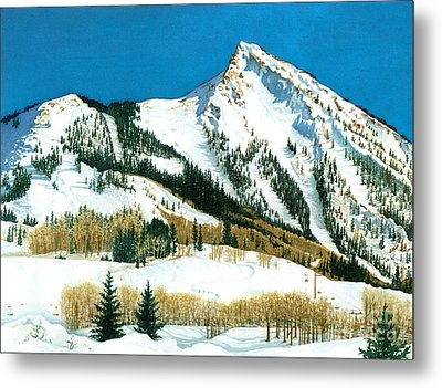 Peak Adventure Metal Print by Barbara Jewell