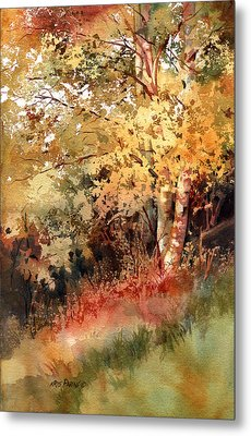 Peak Color Metal Print