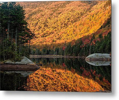 Peak Fall Foliage On Beaver Pond Metal Print by Jeff Folger