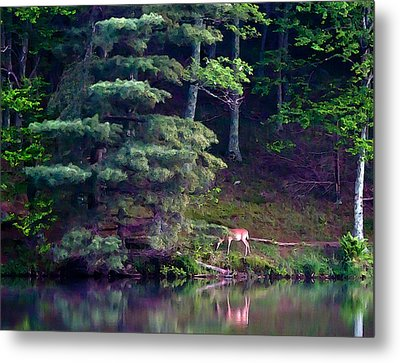 Metal Print featuring the painting Peaks Of Otter Deer by John Haldane