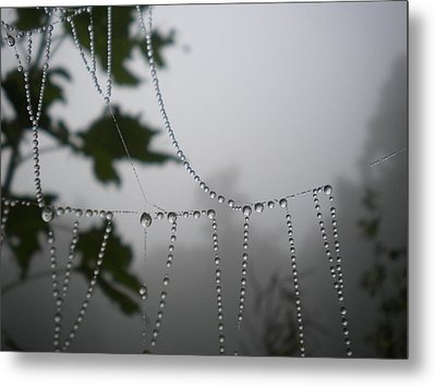 Pearls From Heaven Metal Print by Diannah Lynch