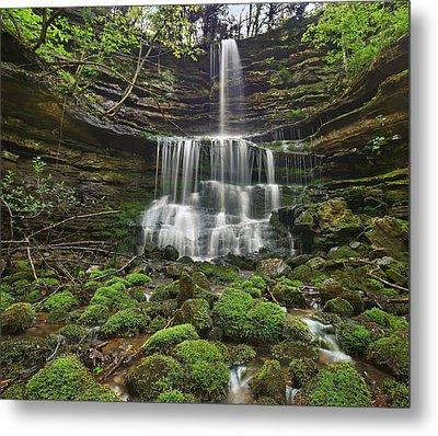 Pearly Springs Waterfall Buffalo Metal Print by Tim Fitzharris