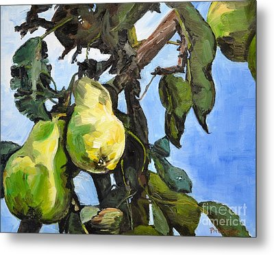 Pears For Picking Metal Print