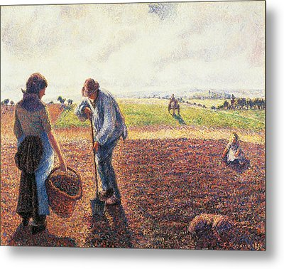 Peasants In The Field Eragny Metal Print by Camille Pissarro