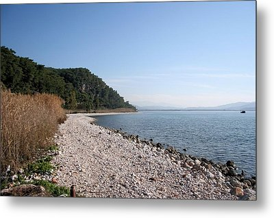 Metal Print featuring the photograph Pebbled Beach by Tracey Harrington-Simpson