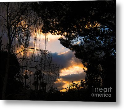 Metal Print featuring the photograph Peek A Boo Sunset by Janice Westerberg