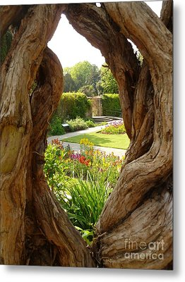 Peek At The Garden Metal Print by Vicki Spindler