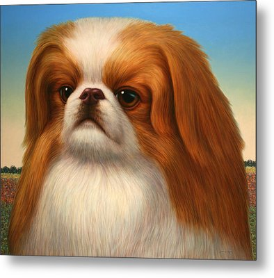 Pekingese Metal Print by James W Johnson