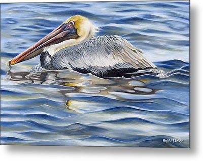 Pelican At Cedar Point Metal Print by Phyllis Beiser