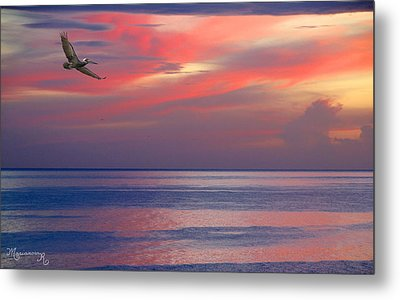 Metal Print featuring the photograph Pelican At Sunset by Mariarosa Rockefeller
