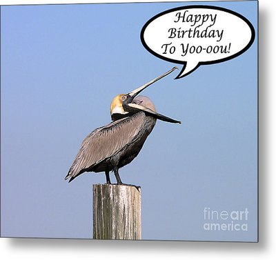 Pelican Birthday Card Metal Print by Al Powell Photography USA