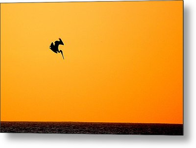 Metal Print featuring the photograph Pelican Diving At Sunset by AJ  Schibig