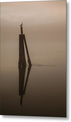 Pelican On A Stick Metal Print