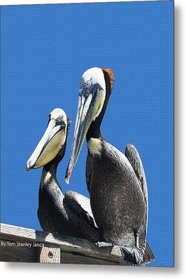 Metal Print featuring the photograph Pelican Pair by Tom Janca