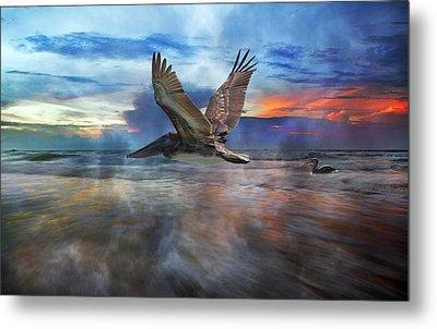 Pelican Sunrise Metal Print