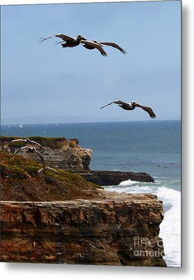 Metal Print featuring the photograph Pelicans by Theresa Ramos-DuVon