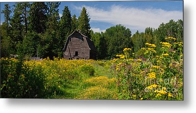 Metal Print featuring the photograph Pend Oreille Barn by Sam Rosen