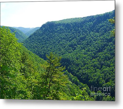 Metal Print featuring the photograph Pennsylvania Grand Canyon 1 by Tom Doud