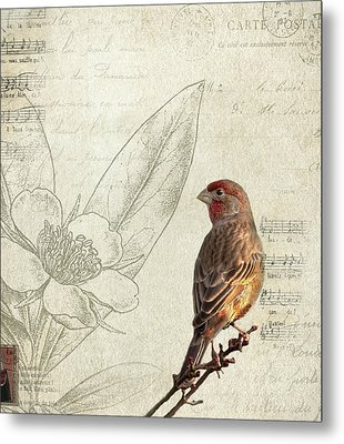 Perched Metal Print by Rebecca Cozart