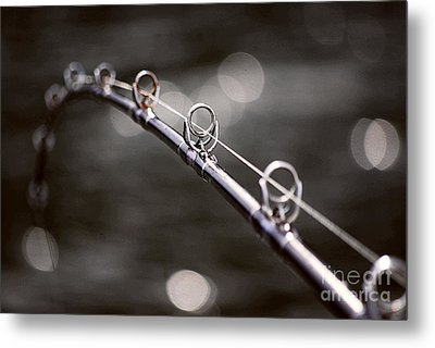 Metal Print featuring the photograph Perfect Day by Cynthia Lagoudakis