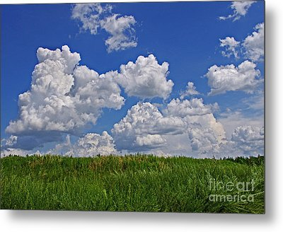 Perfect Day Metal Print
