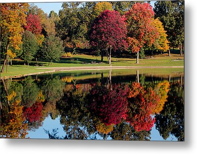 Perfect Day Metal Print by Rob Blair
