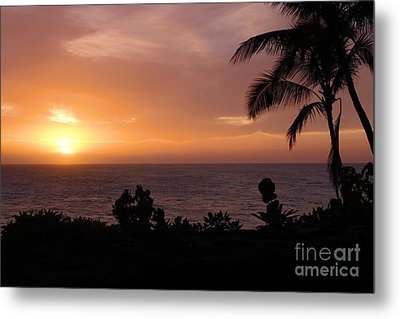 Perfect End To A Day Metal Print by Suzanne Luft