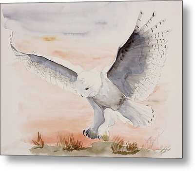 Perfect Landing Metal Print by Joette Snyder