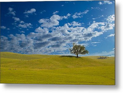 Perfect Landscape Metal Print by Rima Biswas