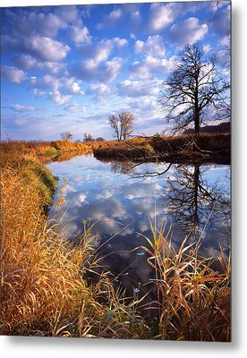 Perfect Morning Metal Print by Ray Mathis