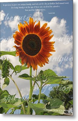 Perfection In The Eye Of The Beholder Metal Print