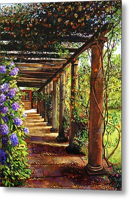 Pergola Walkway Metal Print by David Lloyd Glover