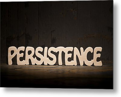 Persistence Metal Print by Donald  Erickson