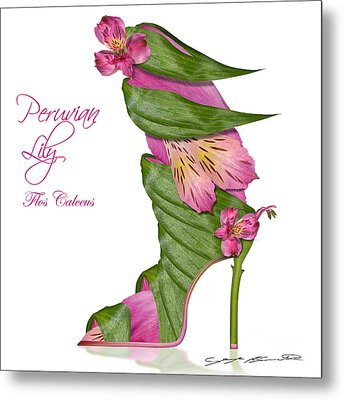 Peruvian Lily Flos Calceus Metal Print by Blanchette Photography