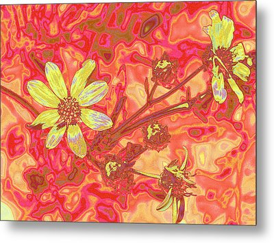Petalia Metal Print by Wendy J St Christopher