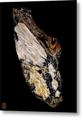 Petrified Wood Opus01 Metal Print by Rock Hound
