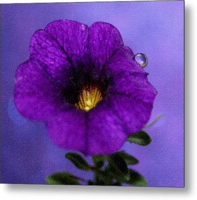 Petunia Dream Metal Print