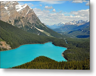 Peyto Lake Metal Print by Lisa Phillips