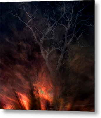 Phoenix One Metal Print by Randal Bruck