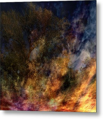 Phoenix Two Metal Print by Randal Bruck